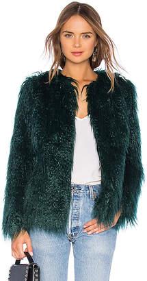 Majorelle Briar Coat