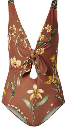 Johanna Ortiz Newport Beach Cutout Floral-print Swimsuit - Brown