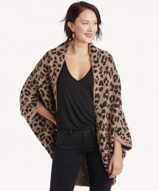 Sole Society Cheetah Printed Wrap