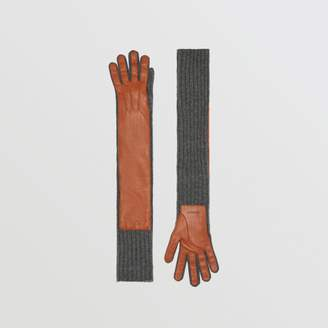 Burberry Cashmere and Lambskin Longline Gloves