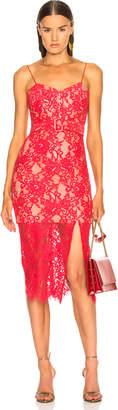 Nicholas Rubie Lace Bra Dress in Watermelon | FWRD