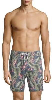 Barney Cools Amphibious Palm Print Swim Shorts