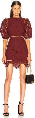 Zimmermann Jaya Wave Short Dress in Merlot | FWRD