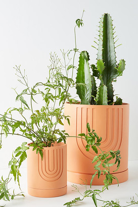 Anthropologie Arch Etched Planter By in Yellow Size S