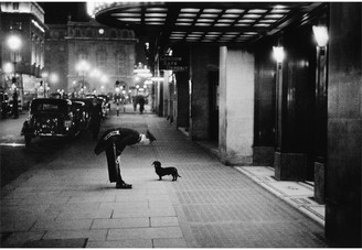 """Jonathan Adler """"Commissionaire's Dog"""" from Getty Images"""