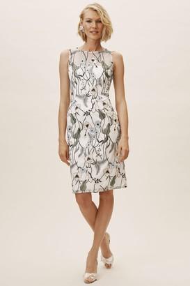 Adrianna Papell Gwyn Dress