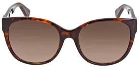 Gucci Brown Gradient Sunglasses