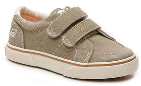 Sperry Boys Halyard H & L Toddler Sneaker