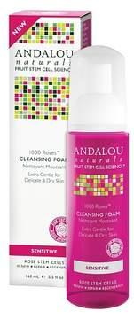 Andalou Naturals 1000 Roses Cleansing Foam - 5.5 Oz