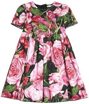 Dolce & Gabbana Roses Print Cotton Poplin Dress