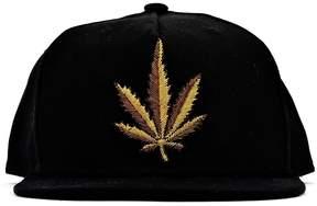 Palm Angels Black Gold Leaf Cap