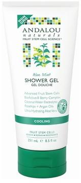 Andalou Naturals Aloe Mint Cooling Shower Gel - 8.5 oz