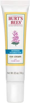 Burt's Bees Intense Hydration Eye Cream