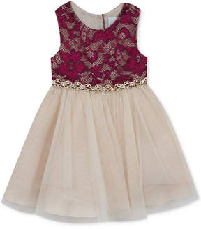 Rare Editions Lace-Bodice Party Dress, Toddler Girls (2T-5T)