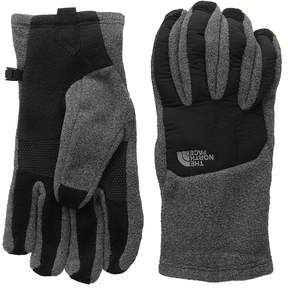 The North Face Men's Denali Etiptm Glove Extreme Cold Weather Gloves
