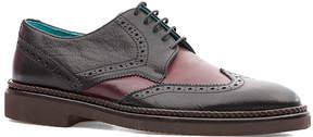 Levi's Black & Burgundy Leather Oxford - Men