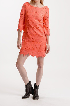 Ark & Co Lace Shift Dress