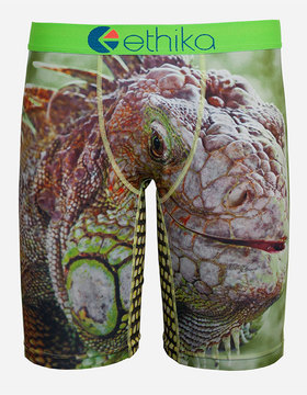 Ethika Reptile Staple Boys Underwear