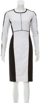 Narciso Rodriguez Colorblock Bodycon Dress