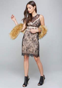 Bebe Halie Dress