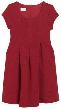 Iris & Ivy Toddler Girl's Textured Knit Dress