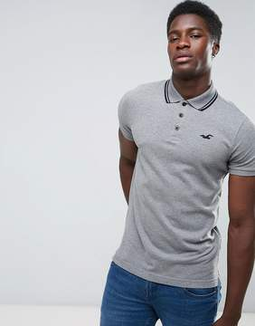 Hollister Polo Tipped Pique Icon Logo Slim Fit in Gray