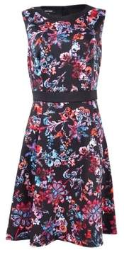 Nine West Women's Floral A-Line Dress (8, Sienna Combo)
