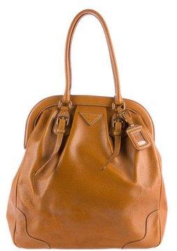 Prada Cinghale Frame Bag