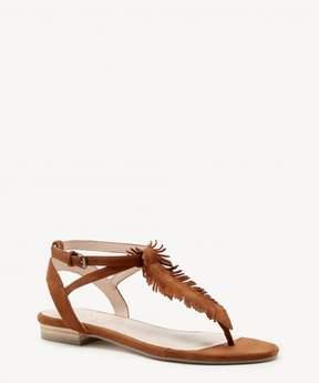 Sole Society Mara T Strap Flat Sandal