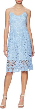 Alexia Admor Women's Cotton Lace Midi Dress