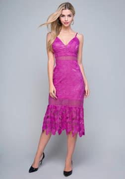 Bebe Taylor Lace Dress