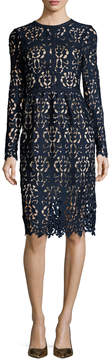 Alexia Admor Women's Lace Knee Length Dress
