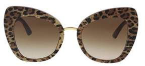 Dolce & Gabbana Dg4319 316113 Leo On Bordeaux Cat Eye Sunglasses.