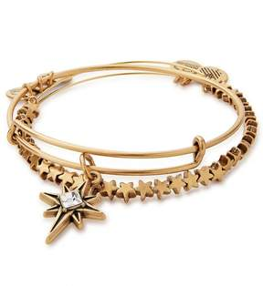 Alex and Ani North Star Set of 2