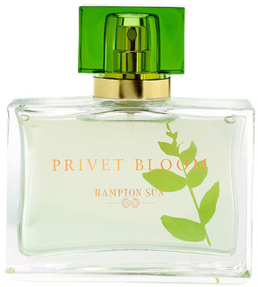 Hampton Sun Privet Bloom Eau de Parfum, 1.7oz