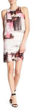 Dex Sleeveless Print Dress