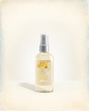 Hollister Willow Cove Travel Mist