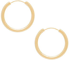 Elizabeth and James Medium Holly Hoops