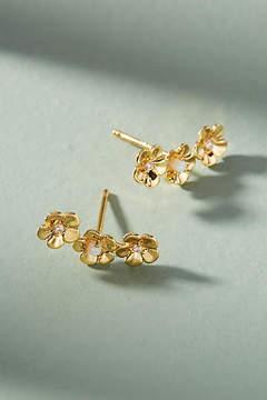 Anthropologie Trenita Climber Earrings