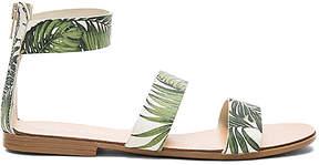 Matisse Nikita Sandal