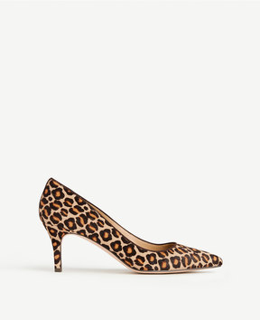 Ann Taylor Eryn Leopard Print Haircalf Pumps