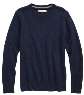 Tucker + Tate Toddler Boy's V-Neck Sweater