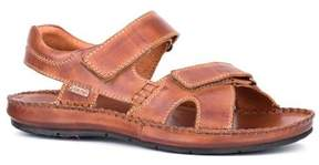 PIKOLINOS Men's Tarifa Active Sandal 06J-5818