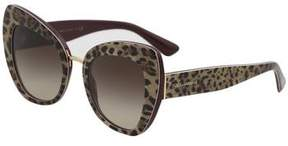 Dolce & Gabbana DG4319 4319 3161/13 Leopard/Bordeaux Cat Eye Sunglasses 51mm
