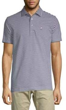 Psycho Bunny Striped Cotton Polo