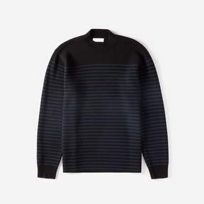 Everlane The Midweight Merino Mockneck