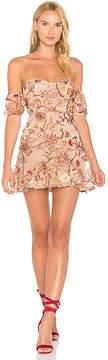 For Love & Lemons Botanic Strapless Dress