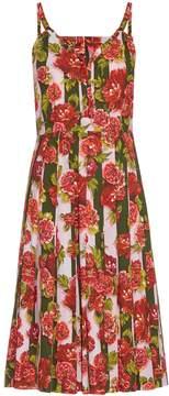 Emilia Wickstead Juliet floral and striped-print dress