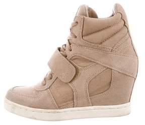 Ash High-Top Wedge Sneakers