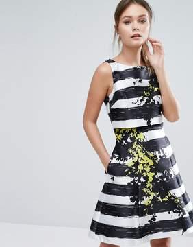 Coast Doree Stripe Flower Placement Skater Dress